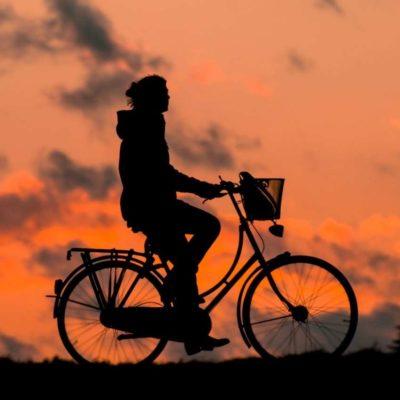 Citybikes & Hollandräder